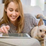 Onlinekredit vom Sofa aus